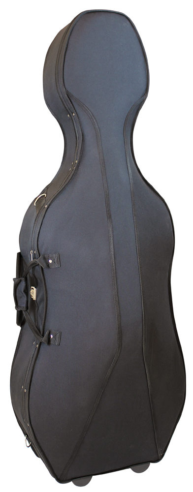 Styrofoam Cello Case