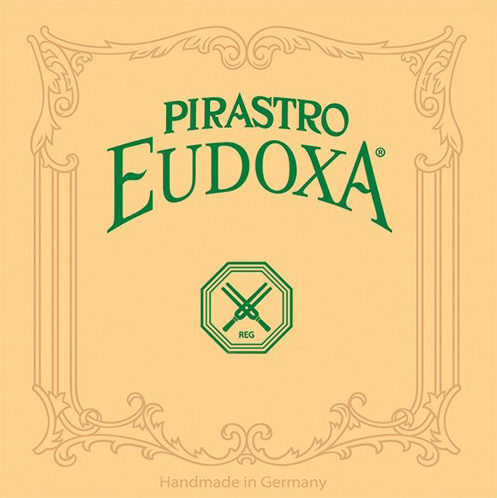 Eudoxa Double Bass Set