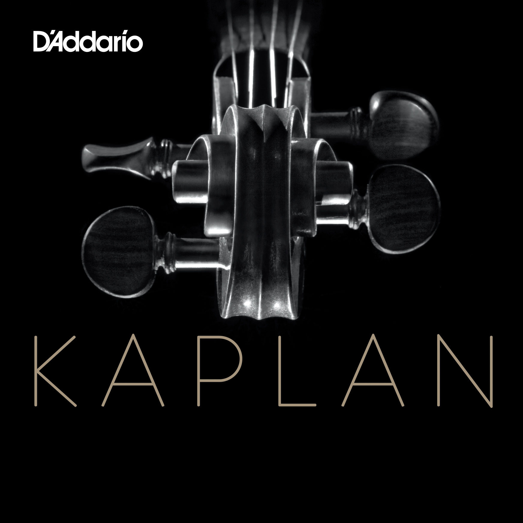Kaplan Vivo Violin Set