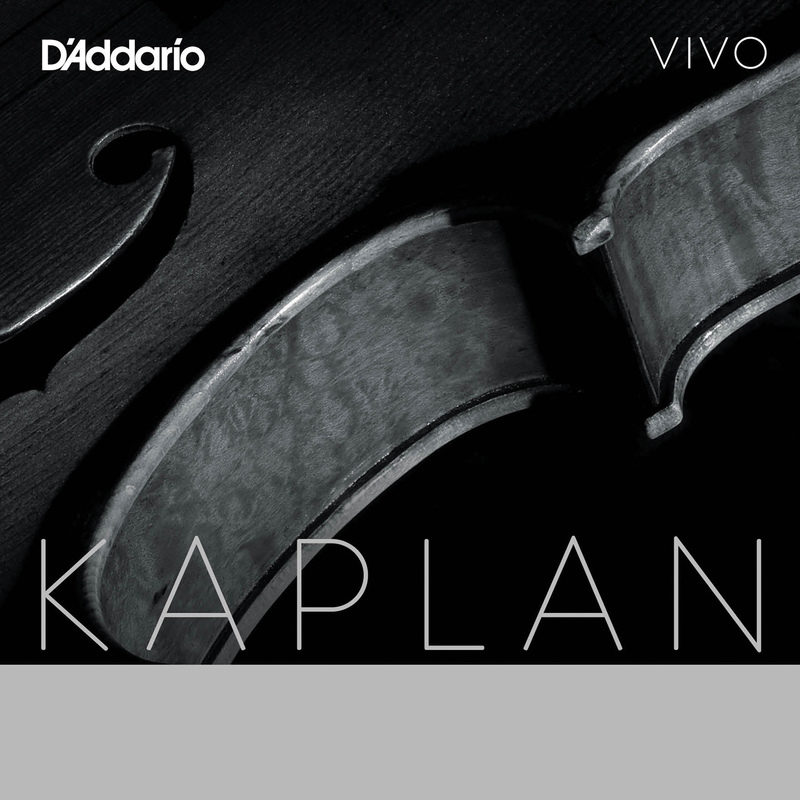Kaplan Vivo Viola Set