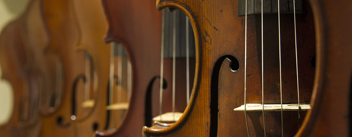 Violin Strings Online - the best place online to buy violin, viola, cello & double bass strings, cases & accessories. Slide 2